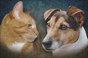 Portret Poes en Hond patroon